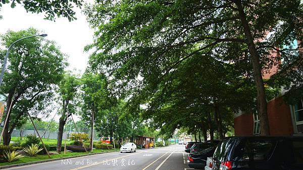 亞洲大學阿勃勒荷花29.jpg
