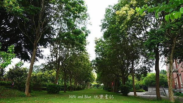 亞洲大學阿勃勒荷花30.jpg