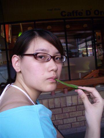 2005-泰國的葉子比較好吃