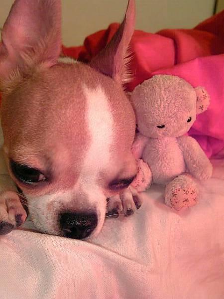 OS:我真的累了
