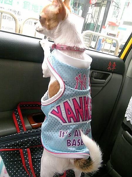 妮妮好像很想去打球