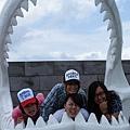 我們在鯊魚的嘴裡