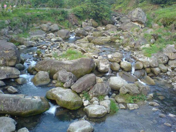 清澈的溪流,可以看到溪裡的苦花魚(高山深鯝魚)在游泳