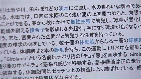 Keibuho Yabe Kenzo S2 ep07 (1280x720 x264)[16-36-24].JPG