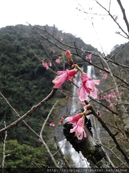 C360_2012-02-27-13-18-16_org