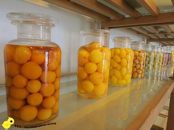 【宜蘭】觀光工廠-橘子鄉-蜜餞的家鄉