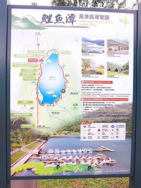【花蓮景點】鯉魚潭-山林中美麗的湖泊