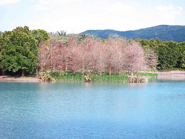 【花蓮景點】雲山水生態農莊-熱帶島嶼般的美景