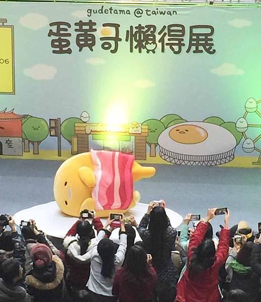 【高雄展覽】蛋黃哥展覽-蛋黃哥懶得展-高雄科工館