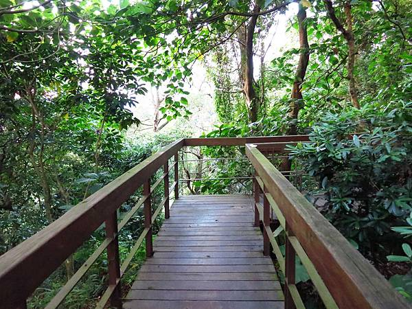 【台北旅遊】瓊仔湖登山步道-台北美麗夜景、約會聖地最佳選擇