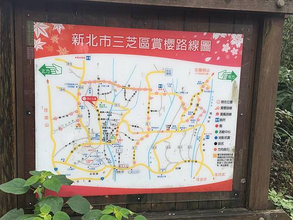 【台北旅遊】三芝真龍殿寶塔-櫻花秘境步道
