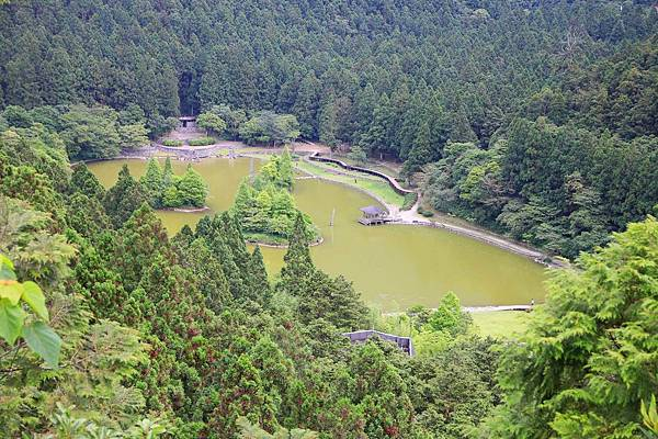 【桃園旅遊】明池山莊森林遊樂區-夏日登高避暑的最佳去處