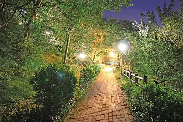 【新北市五股】水碓景觀公園觀景台-美麗夜景,約會聖地