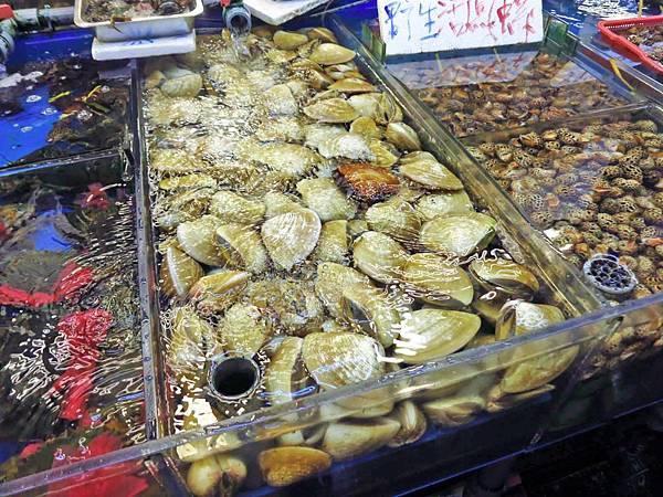 【桃園旅遊】竹圍漁港一日遊-超大新鮮海產與眺望飛機降落