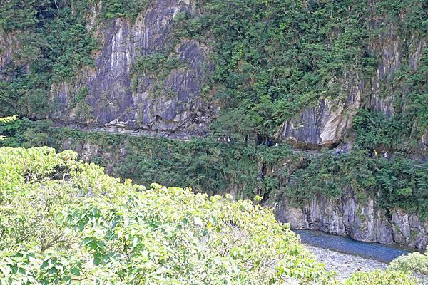 【花蓮旅遊】砂卡礑步道-美麗河川與風景山秀步道