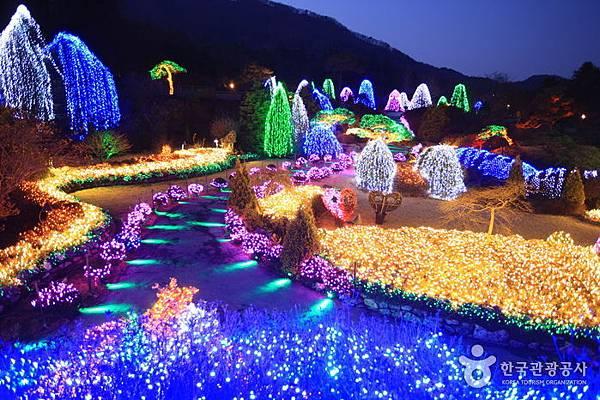 【韓國旅遊】晨靜樹木園-美麗花朵覆蓋的美麗庭園
