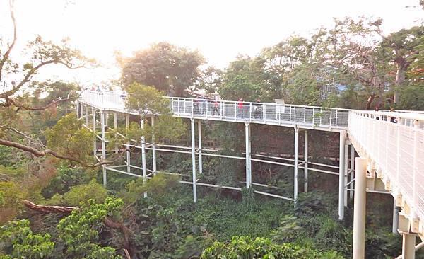 【彰化旅遊】八卦山天空步道-全長1公里底下祼空的天空步道