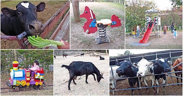 【彰化旅遊】日月山景休閒農場-免門票也可以近距離餵牛
