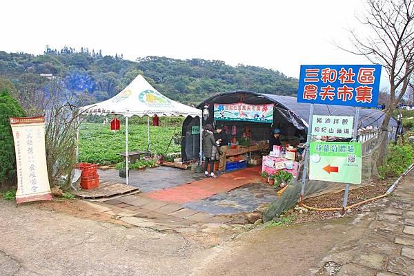 【台北旅遊】三芝三生步道-長達1公里長的櫻花步道