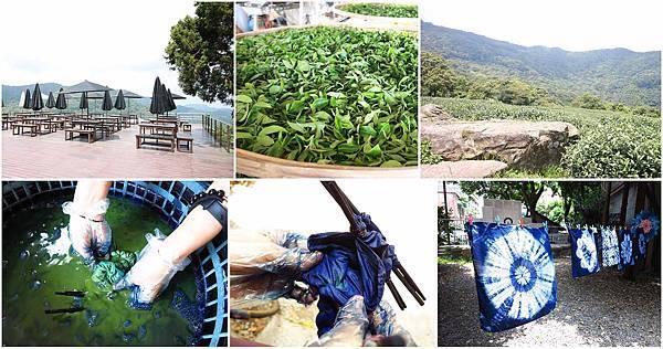 【新北市一日遊】三峽熊空茶園+三峽藍染工坊DIY-三峽景點一日遊