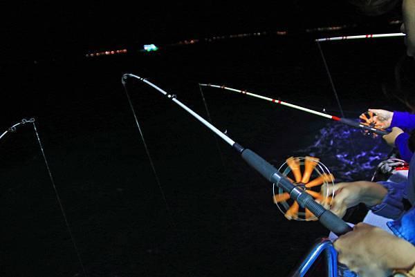 【澎湖夜釣小管】來到澎湖一定要體驗的夜釣小管