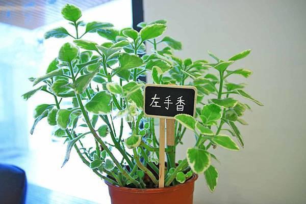 【台中旅館】草悟道住宿綠宿行旅Green Hotel-與大自然融為一體的綠色旅館