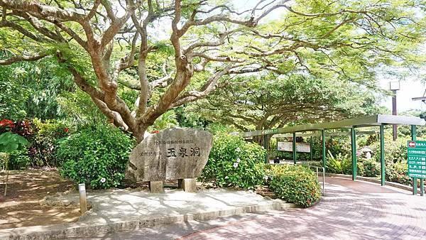 【沖繩景點】沖繩世界文化王國・玉泉洞-長綿數公里的鐘乳石山洞與琉球風景景點
