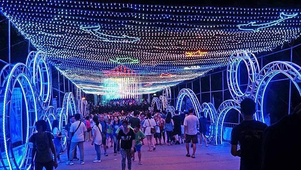 【2019澎湖國際海灣燈光節】15米大鯨魚主燈、400米星空虹橋,詳細內容介紹,完整拍攝體驗分享
