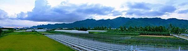 【美濃住宿】美濃田中央民宿-四面環山農田環繞有如住入農家的舒適休閒民宿