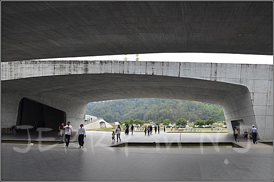 DSC_3711.jpg