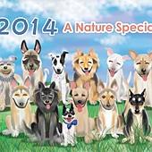 2014狗狗