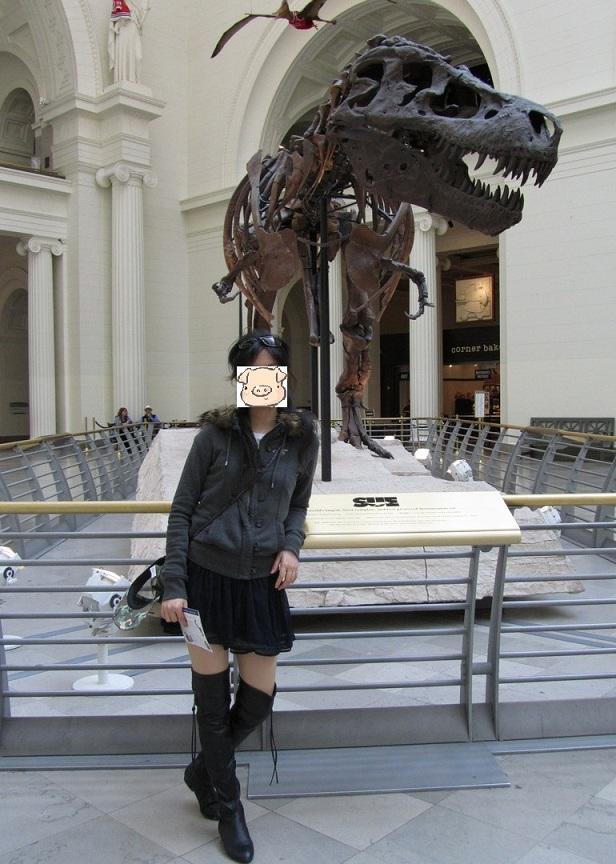 芝加哥菲爾德博物館到此一遊