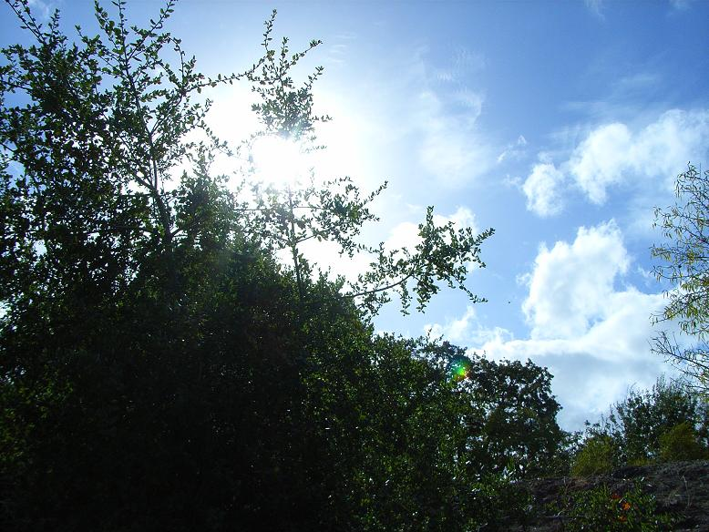 2009/10/14 CA