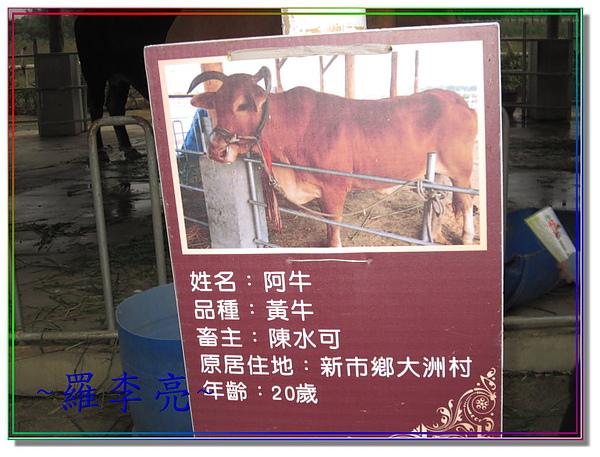 老牛的家 012.jpg