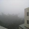 一早...起霧了...好大的霧