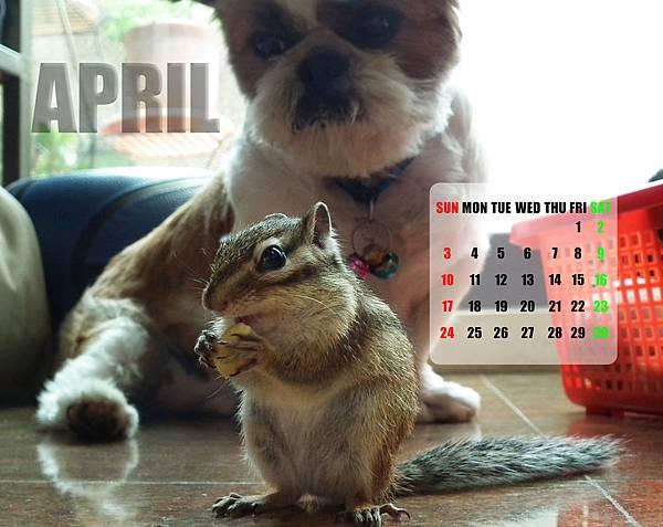 4月桌面.jpg