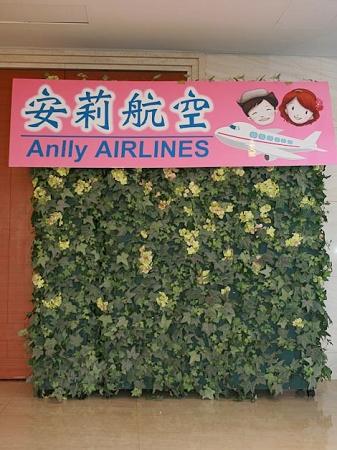 安莉航空.jpg