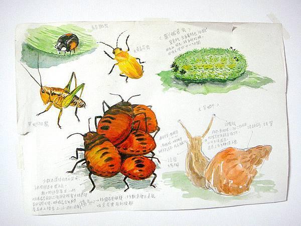 我最近的繪畫練習 (2).JPG
