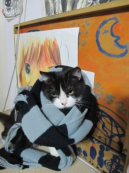 好冷的冬天~哈囉用圍巾 (2).JPG