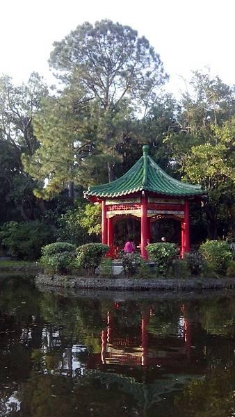 植物園景色 (2)