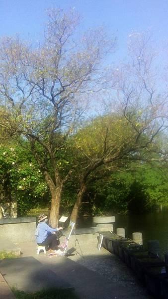 植物園景色 (10)