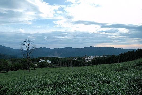 竹山之旅 173.JPG