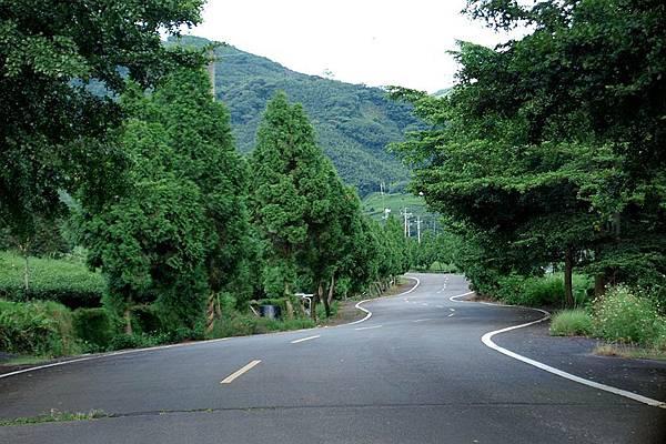 竹山之旅 147.JPG