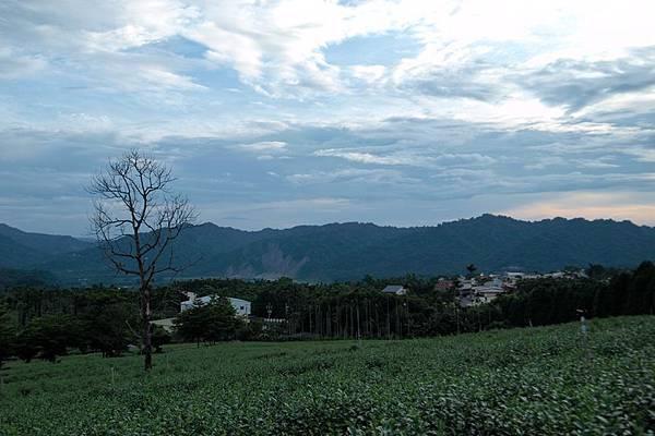 竹山之旅 181.JPG