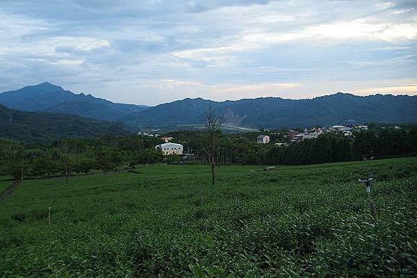 竹山之旅 255.JPG