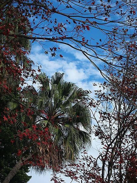 林家花園 024.JPG
