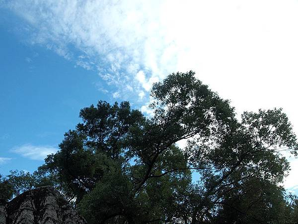 林家花園 137.JPG