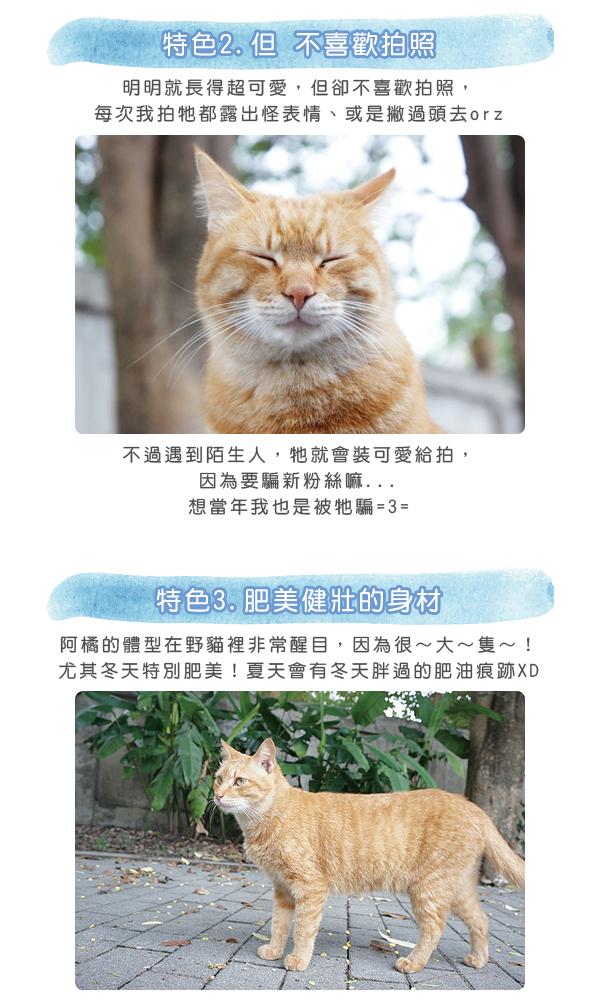 阿橘大剖析1-02.jpg