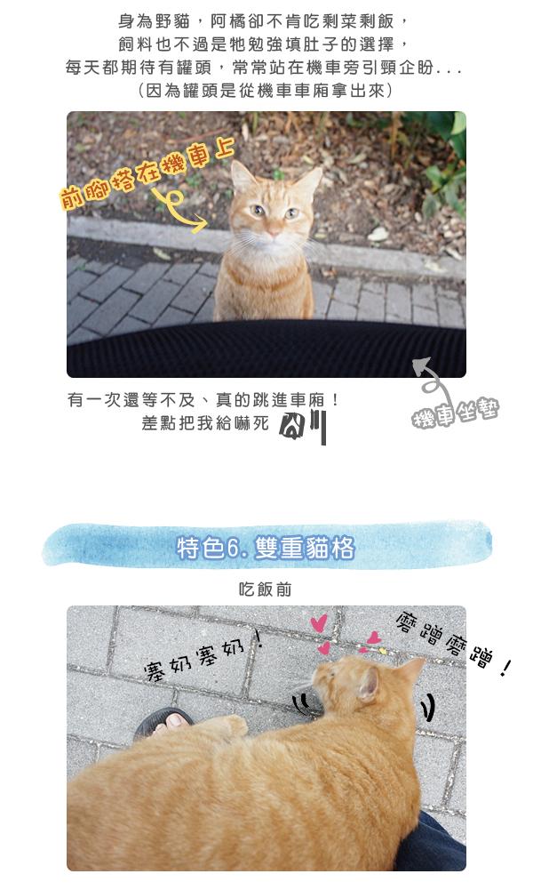 阿橘大剖析1-04.jpg