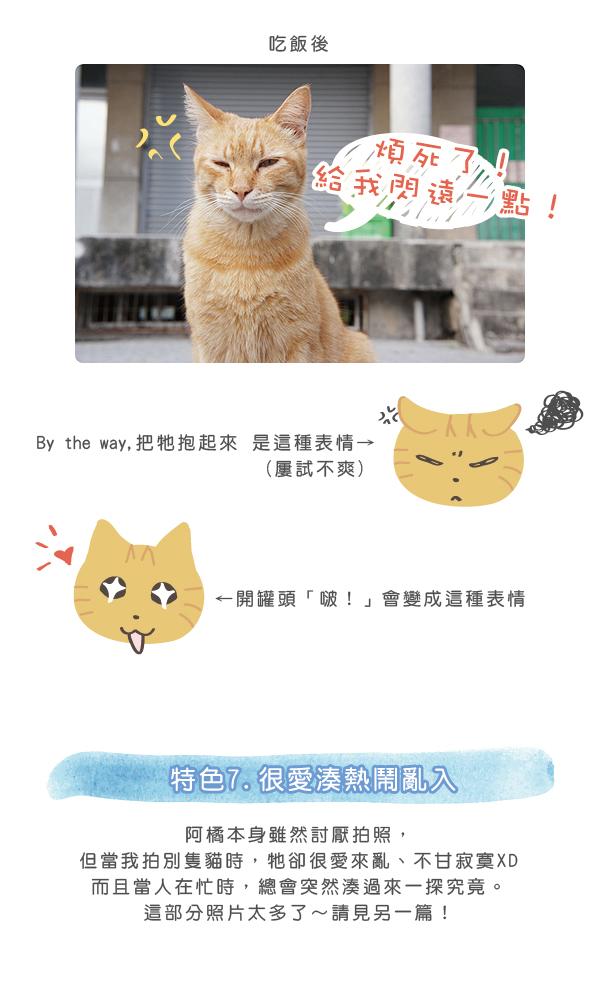 阿橘大剖析1-05.jpg